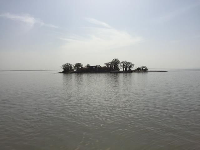 クンタ・キンテ島と関連遺跡群の画像1