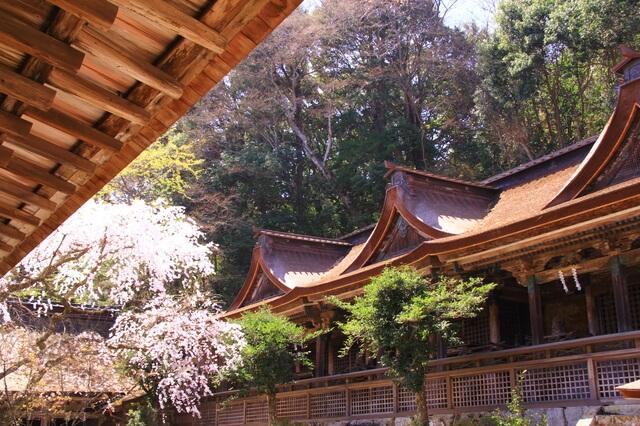 吉野水分神社の画像1