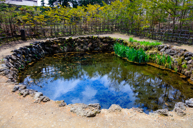 忍野八海:銚子池の画像1