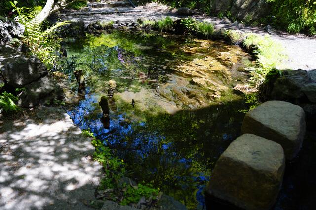 忍野八海:御釜池の画像1
