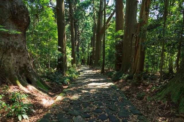 http://world-heritage.s3-website-ap-northeast-1.amazonaws.com/img/1500953467_pixta_29807273_S(1).jpg