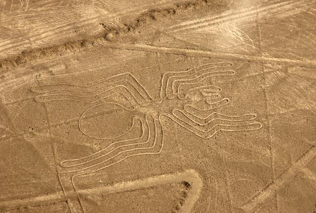ナスカとパルパの地上絵
