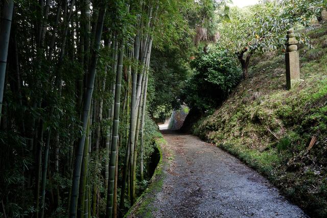 http://world-heritage.s3-website-ap-northeast-1.amazonaws.com/img/1501474539_高野山町石道.jpg