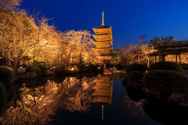 古都京都の文化財の画像20