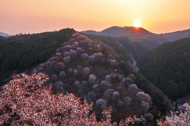 紀伊山地の霊場と参詣道の画像5