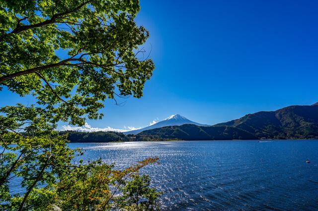 河口湖の画像2