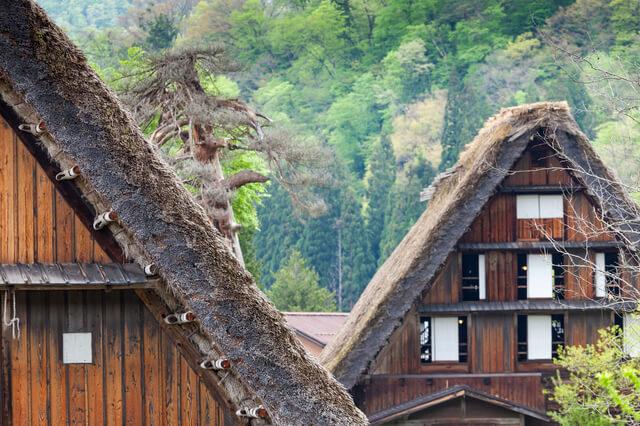荻町集落の画像2