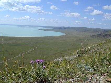 ダウリヤの景観群の画像1