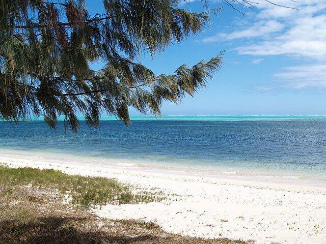 ニューカレドニアの珊瑚礁:環礁の多様性と関連する生態系の画像5