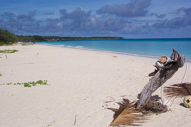 ニューカレドニアの珊瑚礁:環礁の多様性と関連する生態系の画像7