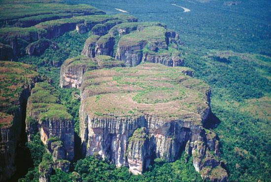 チリビケテ国立公園「ジャガーのマロカ」の画像1