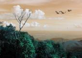 http://world-heritage.s3-website-ap-northeast-1.amazonaws.com/img/1500515079_serra-858783_640.jpg