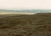 http://world-heritage.s3-website-ap-northeast-1.amazonaws.com/img/1507356471_Wrangel_Island_tundra.jpg