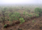 http://world-heritage.s3-website-ap-northeast-1.amazonaws.com/img/1526382865_Loropeni.jpg