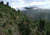 http://world-heritage.s3-website-ap-northeast-1.amazonaws.com/img/1531249736_Paisaje_en_Texcala,_Puebla,_Mexico.jpeg